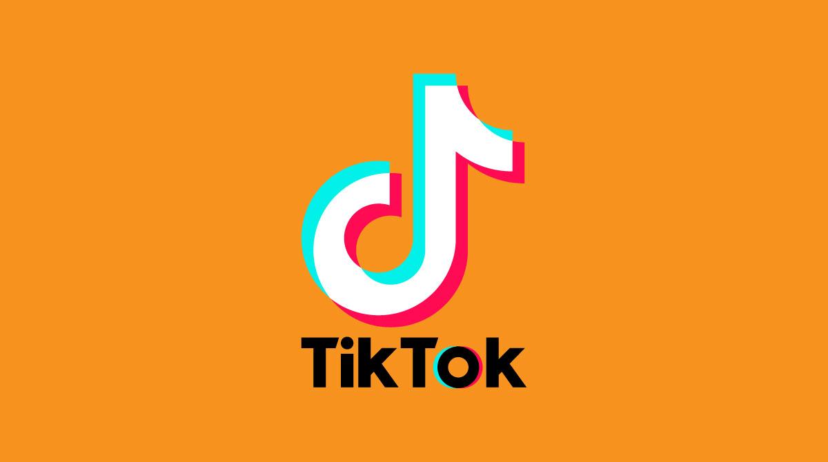 tktok per il business shibumi digital agency social media agency crescere su instagram facebbok taranto puglia